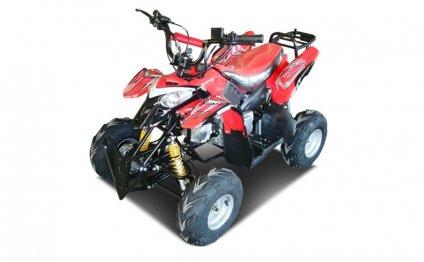 Детский квадроцикл LMATV-110P