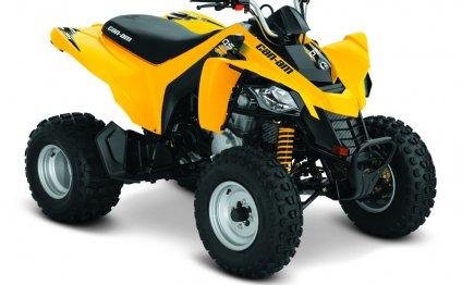 DS 250 - Квадроциклы ATV